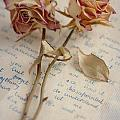 Dried Roses And Vintage Letter by Lee Avison