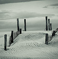 Drifting Dunes by Tom McGowan