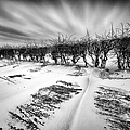 Drifting Snow by John Farnan