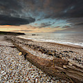 Driftwood Laying On The Gravel Beach by John Short