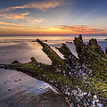 Driftwood On The Beach by Debra and Dave Vanderlaan