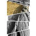 Driftwood by Sara Kirk
