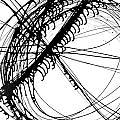 Drippy Circles Black by Faith Waite