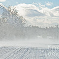 Driving In The Snow by Cheryl Baxter