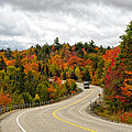 Driving Through Algonquin Park In Fall by Les Palenik