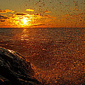 Droplets Of Gold by James Peterson