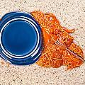 Dropped Plate Of Spaghetti On Carpet by Joe Belanger