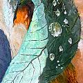 Drops On A Leaf by Daniel Janda