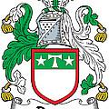 Drury Coat Of Arms Irish by Heraldry