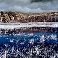 Dry Lagoon Blues by Greg Nyquist