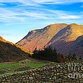 Dry Stone Walls In Patterdale In The Lake District by Louise Heusinkveld