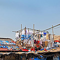 Drying Clothes Indian Style by Kantilal Patel