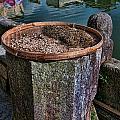 Drying Tea Leaves by Noel Lopez