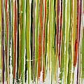 D.s. Color Band Skinny by Kathy Sheeran
