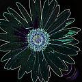 Dscn5419c6-001 by Kimberlie Gerner