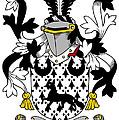 Duane Coat Of Arms Irish by Heraldry