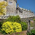 Dublin Castle by Brian Jannsen