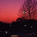Dubonnet Sky  by Robert  Rodvik