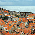Dubrovnik Rooftops And Walls by Tony Murtagh