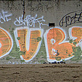 Dubs by Donna Blackhall