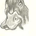 Duck Bill In Pencil by Marissa McAlister