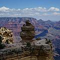 Duck On A Rock Grand Canyon by Rafael La O Garcia