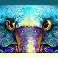 Duckeaglebird by Oliver  Norden