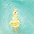 Duckling by Molly Susan Strong