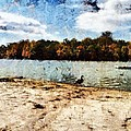 Ducks At The Beach Again by Derek Gedney