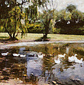 Ducks In A Row by Shannon Story