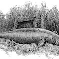 Dugong, Sea-cow by British Library