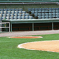 Dugout At The Old Ballpark by Frank Romeo