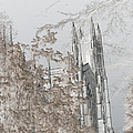 Duke Chapel - Infrared by Paulette B Wright