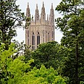 Duke Chapel by Cynthia Guinn