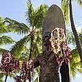 Duke Kahanamoku Statue by Leigh Anne Meeks