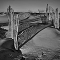 Dune Erosion Fence Outer Banks Nc B And W Img_3761 by Greg Kluempers