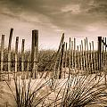 Dune Fence by Brian Caldwell