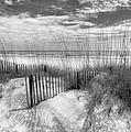 Dune Fences by Debra and Dave Vanderlaan