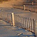 Dune Fences Early Morning by Steven Ainsworth