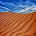 Dune Raven Sky by Gary Warnimont