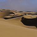 Dune Riders by Tony Beck