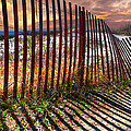 Dune Shadows by Debra and Dave Vanderlaan