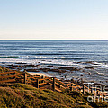 Dune Steps 01 by Rick Piper Photography