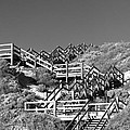 Dune Steps 03 by Rick Piper Photography