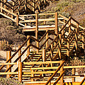 Dune Steps 06 by Rick Piper Photography