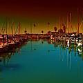 Dunedin Marina by Bill Cannon