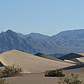 Dunes by Riki and Allen Colby
