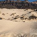Dunes At The Guadalupes by Adam Jewell