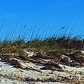 Dunes Of Turks by Judy Wolinsky