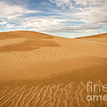 Dunescape by Alice Cahill
